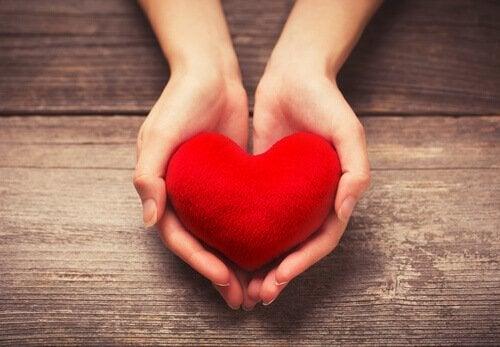 Zwei Hände strecken ein rotes Herz nach vorn.