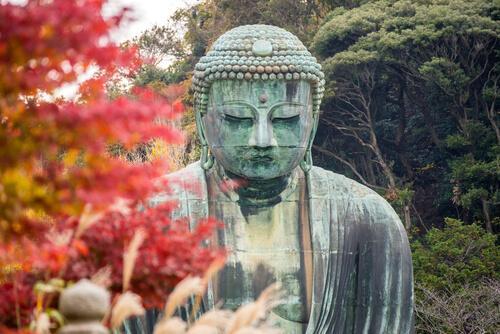 Buddha umgeben von Bäumen