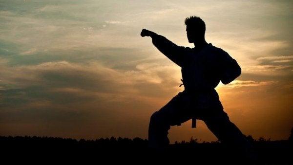 Ein Mann trainiert Kampfkünste