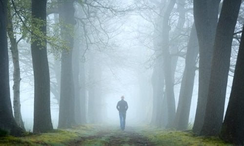 Der Waldtest und sein Platz in der Psychoanalyse