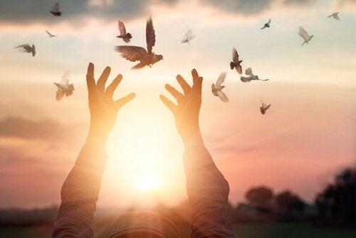 Mann lässt Tauben frei