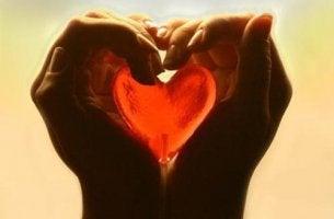 Sätze über Vertrauen können das Herz erwärmen