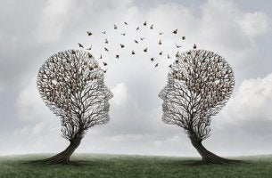 Was ist soziale Kognition beantwortet durch zwei Bäume, die ihre Perspektive wechseln