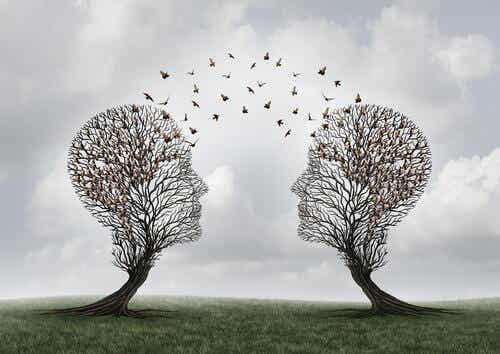 Was ist soziale Kognition?