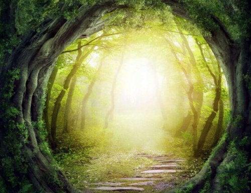 Tunnel durch einen Wald
