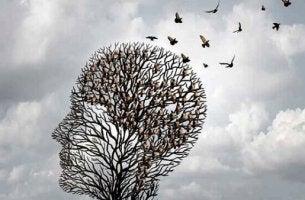 Kurze Wege im Gehirn erleichtern das Denken - Baum in Kopfform mit Vögeln