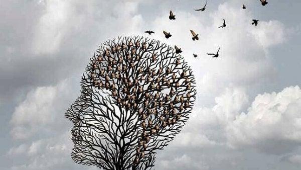 Heuristik - Die Short-Cuts des Gehirns
