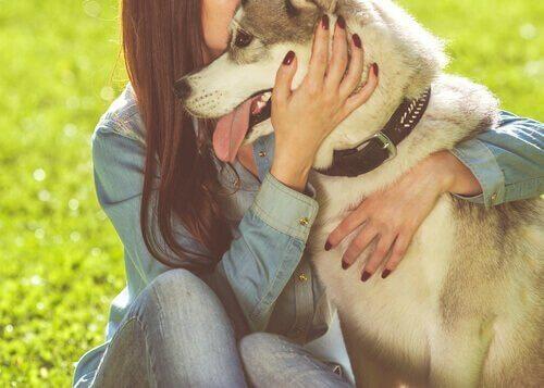 6 Vorteile eines Haustieres