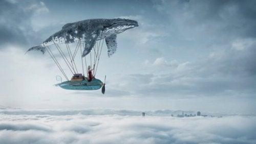 Ein Wal schwebt im Himmel
