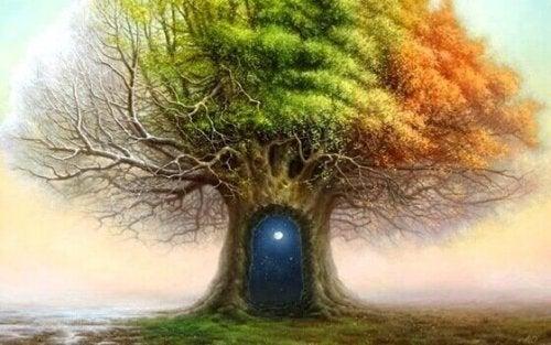 Der Waldtest gibt Aufschluss über die Psyche, wie diese Tür, die in einen Baum führt