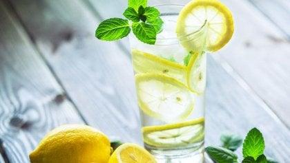Wasserglas mit Zitronenscheiben und Minze