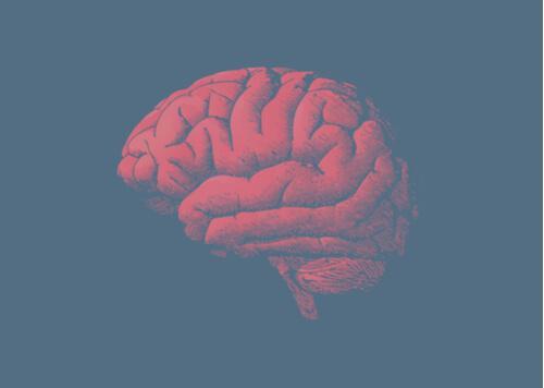 Warum altert das Gehirn? Die Antwort liegt in deinen Genen
