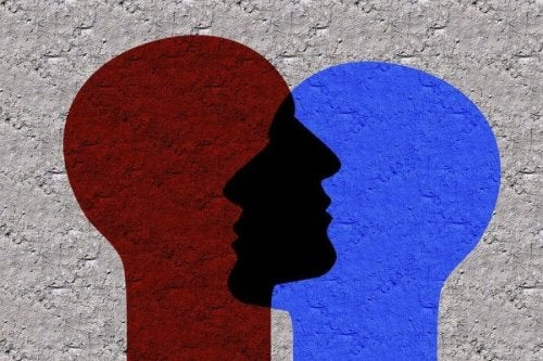 Zwei überlappende Profile in unterschiedlichen Farben.