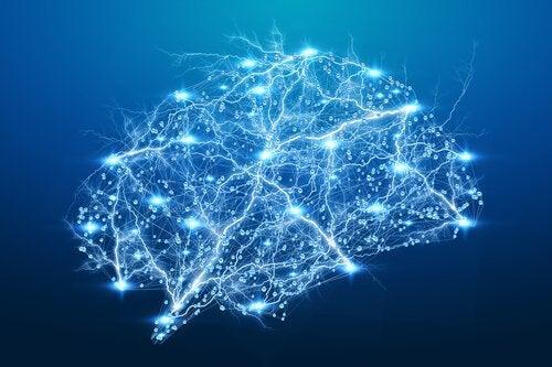Ein erleuchtetes Gehirn
