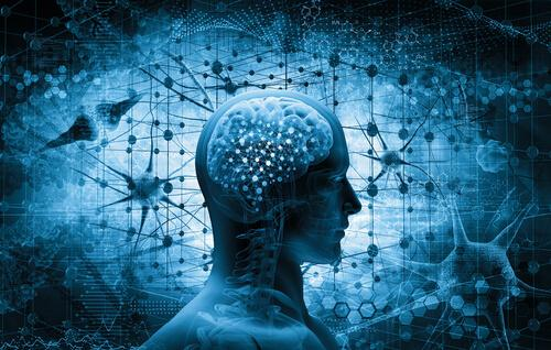 Das menschliche Gehirn mit Neuronen