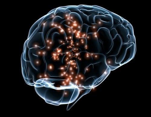 Neuronale Aktivitäten und Engramme im Gehirn