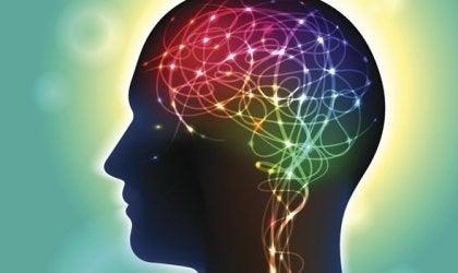 Anandamid: ein Neurotransmitter, der das Glück beeinflusst