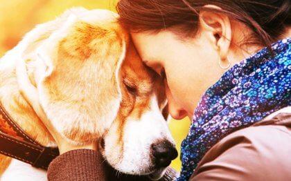 Was uns dazu gebracht hat, mit solcher Intensität ein Tier zu lieben