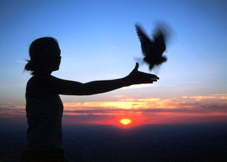 Frau lässt Vogel fliegen