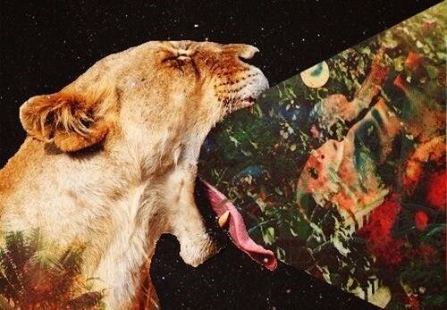 Gefräßiger Löwe