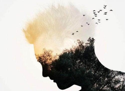 Männliches Profil mit Wald und Vögeln