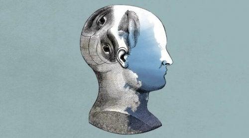 Profil in Grau und Blau