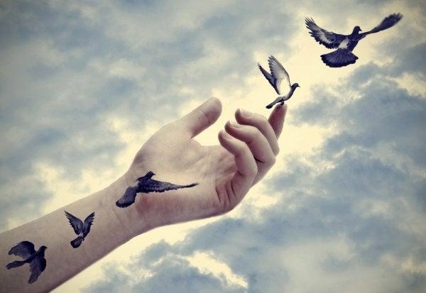 Vögel fliegen von einer Hand weg in den Himmel