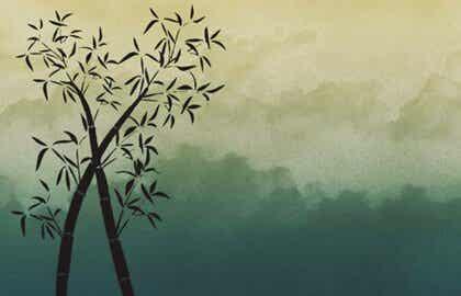 Wie Bambus sein: Zeit, Kraft und Flexibilität