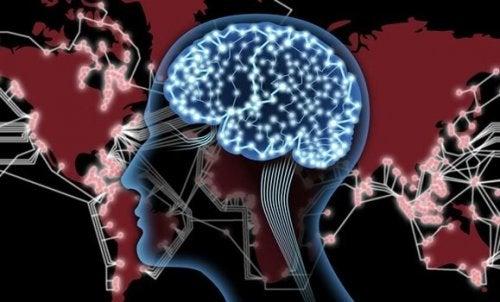 Ein Bild zeigt die neuronalen Verbindungen im Gehirn.