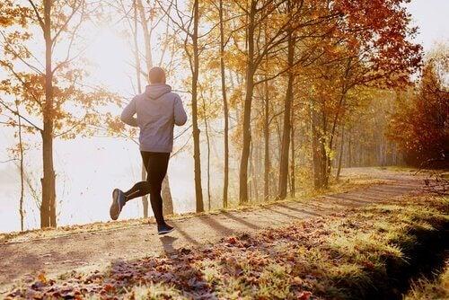 Ein Mann joggt durch den herbstlichen Wald.