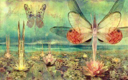 Schmetterlingsfrauen