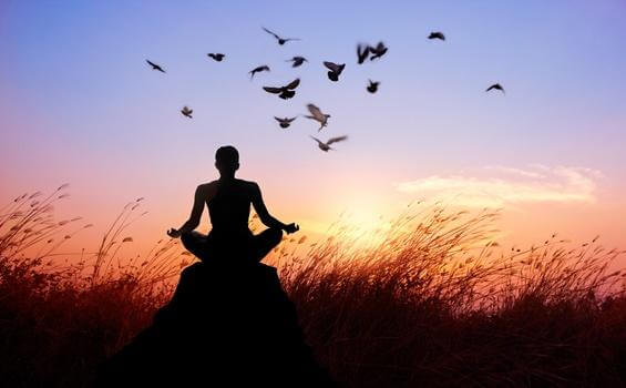 Buddhistischer Mönch, der von Vögeln umgeben meditiert