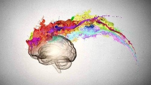 Gehirn mit Farbspritzern