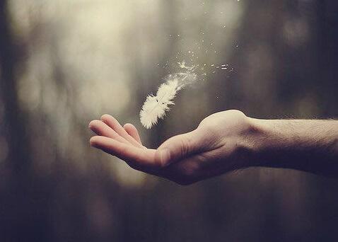 Hand, die eine Feder hält