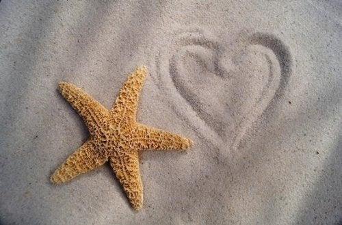 Seestern und Herz
