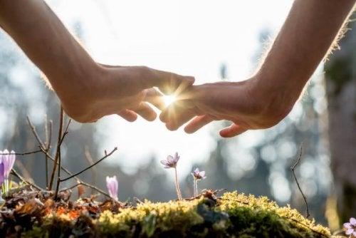 Zwei Hände über einer Blume