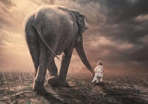Ein kleines Kind führt einen Elefanten am Rüssel.