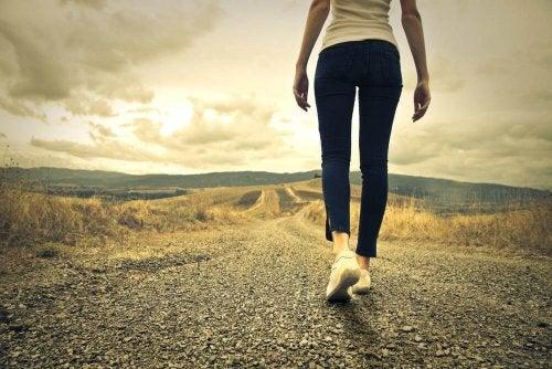 Bessere Entscheidungen: Grenzen wir unsere Auswahl ein