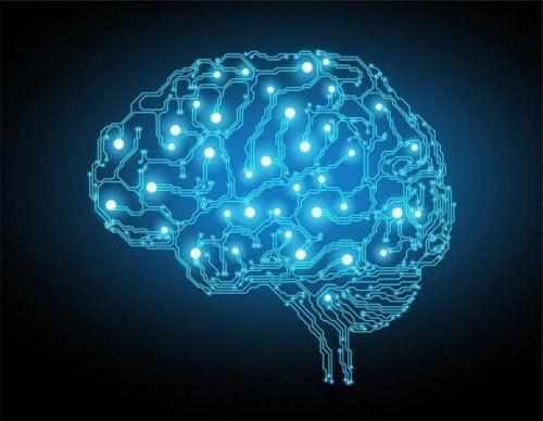 Das Gehirn als ein blaues Netz