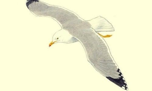 Eine von Hand gezeichnete Möwe fliegt.