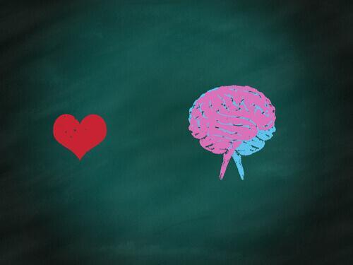 Das Gleichgewicht zwischen Kopf und Herz