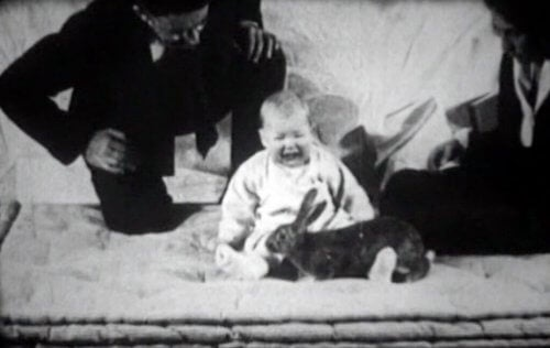 Der kleine Albert und ein Kaninchen