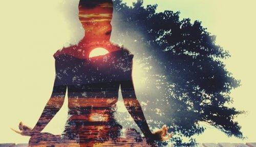 Schattenriss einer meditierenden Frau im Sonnenuntergang mit Baum