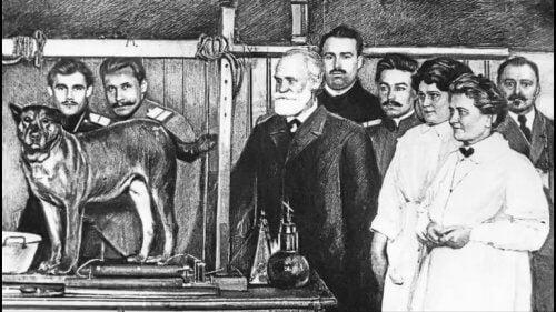Watsons Vorbild: Pawlow und sein Experiment mit Hunden.