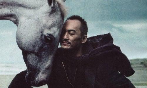 Der rationale Reiter und das emotionale Pferd: ein Gleichgewicht finden