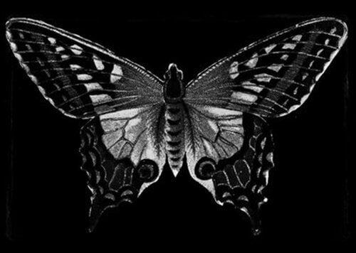 Schwarzer Schmetterling als Symbol für das Böse und den D-Faktor
