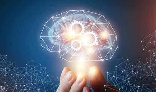 Die Theorie der machiavellistischen Intelligenz
