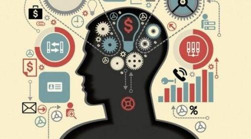 Exekutive Funktionen: Spitzenleistung des Gehirns