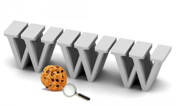 Was sind Cookies im Internet?