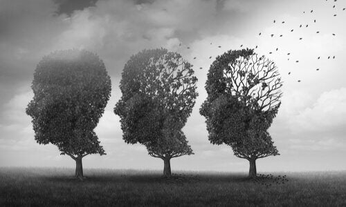 Bäume, die die Form menschlicher Köpfe zu haben scheinen